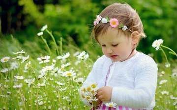 flowers, mood, children, girl, chamomile