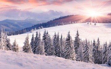 небо, облака, солнце, холмы, снег, лес, зима, пейзаж, поле, склон, ели, сугробы