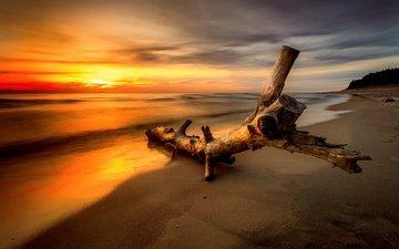 небо, облака, закат, пейзаж, море, пляж, бревно