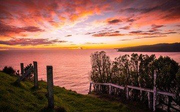 небо, деревья, восход, солнце, берег, побережье, залив