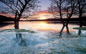облака, деревья, озеро, закат, лёд