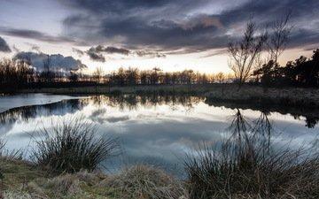 трава, деревья, озеро, закат, отражение, пейзаж
