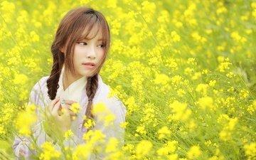цветы, девушка, поле, лето, взгляд, волосы, лицо, азиатка, косички