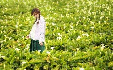 цветы, поле, лето, лицо, прогулка, азиатка, косички