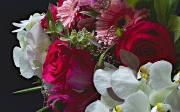 цветы, розы, букет, орхидея, гербера