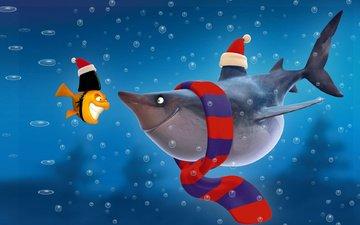 рыбки, акула, персонажи, позитив, шарфик