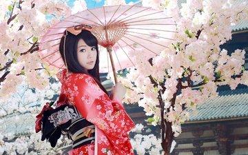 девушка, взгляд, волосы, сакура, зонтик, кимоно, азиатка, гейша