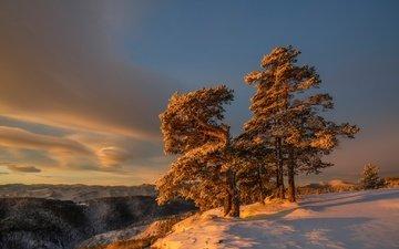 небо, облака, снег, дерево, зима, утро, склон