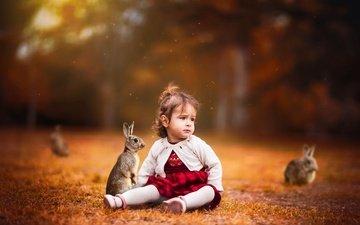 grass, children, glade, girl, hair, face, child, rabbits
