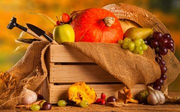 виноград, фрукты, осень, яблоко, урожай, овощи, тыква, ящик, груша, чеснок, мешковина, осенний урожай