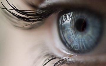 девушка, макро, взгляд, лицо, глаз, ресницы