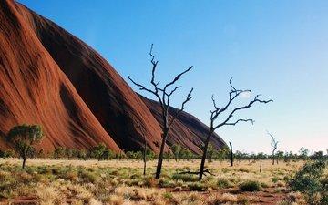 горы, скалы, австралия, национальный парк, улуру-ката-тьюта, uluṟu-kata tjuṯa national park