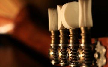 макро, музыкальный инструмент, мандолина