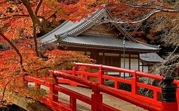 дорога, деревья, листья, храм, мост, япония, клен