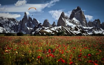 the sky, flowers, clouds, mountains, landscape, field, maki, sport, paraglider