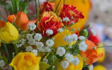 цветы, розы, букет, гипсофила, гипсофила.