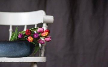 цветы, фон, стул, букет, тюльпаны, таз