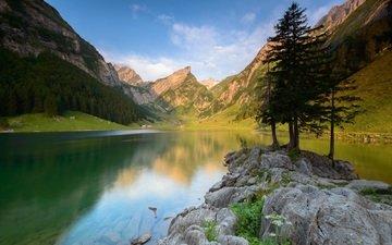 деревья, озеро, горы, камни, пейзаж, лето