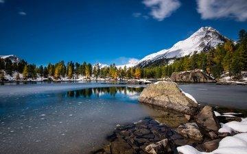 деревья, озеро, горы, снег, швейцария, валь-ди-кампо