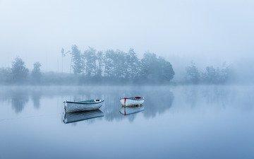 деревья, озеро, утро, туман, лодки, тишина