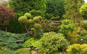деревья, зелень, парк, кусты, забор, сад, англия, bewdley, west midland safari park