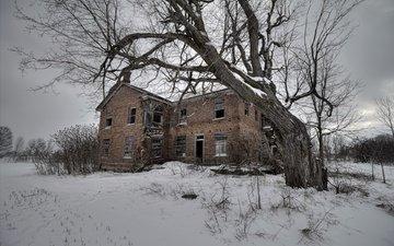 снег, дерево, зима, поле, дом