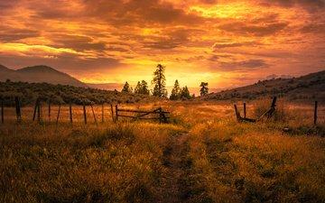 дорога, холмы, закат, поле, лето, ограда