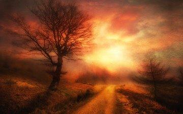 небо, дорога, ночь, дерево, текстура, закат