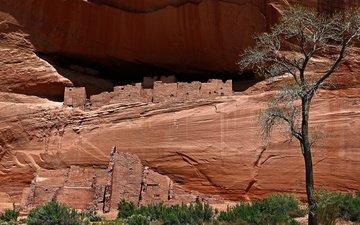 горы, скалы, каньон, сша, аризона, каньон-де-шей