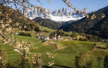 горы, цветение, италия, весна, альпы, южный тироль, доломиты, southtyrol, val di funes, lena held