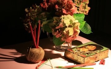 flowers, pencils, bouquet, still life, thread, hydrangea, sharpener