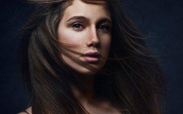 девушка, взгляд, модель, волосы, лицо, кареглазая, shelly