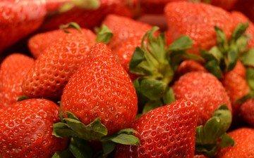 клубника, ягоды, много, вкусно