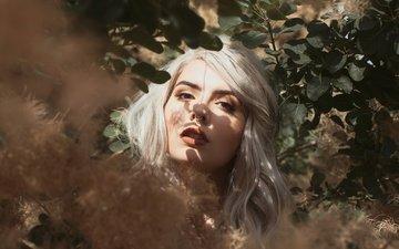 листья, девушка, портрет, взгляд, волосы, лицо, пирсинг