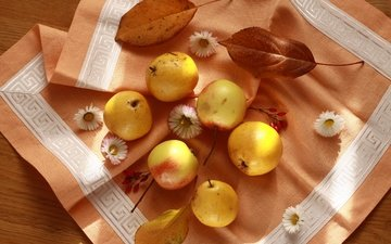 цветы, листья, фрукты, яблоки, осень, салфетка, натюрморт, груши