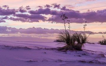 the sky, grass, clouds, snow, winter
