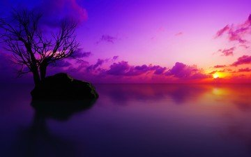облака, дерево, закат, море, камень, силуэт, гладь