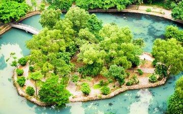 парк, пруд, мосты, вьетнам, ninh binh, тропический сад