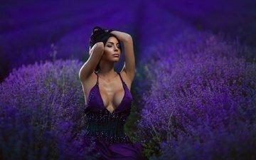 цветы, девушка, платье, поле, лаванда, грудь, волосы, губки, декольте, закрытые глаза