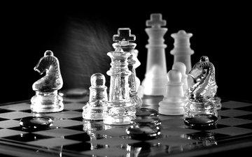 отражение, шахматы, доска, чёрно-белое, фигуры, игра
