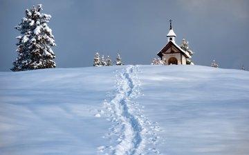 снег, зима, церковь, следы, ели, часовня