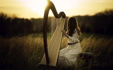 light, nature, girl, field, hair, harp