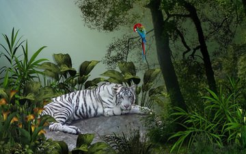 тигр, зелень, белый, тропики, попугай, ара