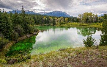 трава, деревья, озеро, горы, лес, тучи, отражение, пейзаж