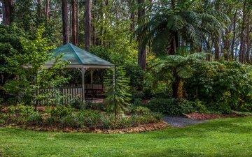 трава, деревья, зелень, парк, кусты, беседка, австралия, газон, mount lofty botanic garden