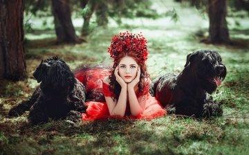 трава, девушка, взгляд, волосы, лицо, венок, собаки, diana lipkina