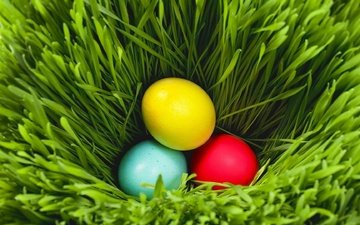 grass, greens, easter, eggs