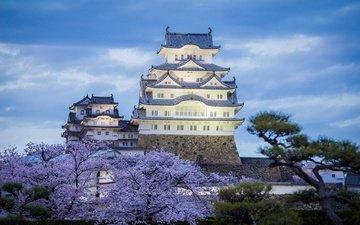 вечер, замок, япония, весна, химэдзи