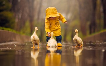 water, reflection, children, birds, child, baby, puddle, chicks, the goslings