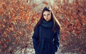 взгляд, волосы, пальто, шарф, evgeniy bulatov, евгений булатов, ульяна, ulyana